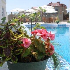 Hotel Sheikh бассейн фото 2