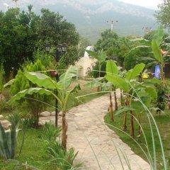 Endam Garden Hotel - All Inclusive фото 2