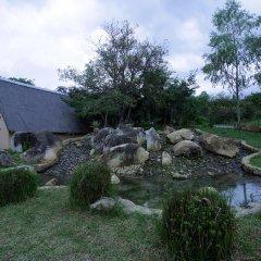 Отель Pululukwa Lodge фото 6