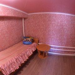 Гостиница Алтын Туяк Люкс с различными типами кроватей фото 3