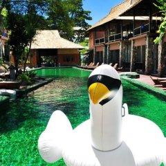 Отель Koh Tao Beach Club бассейн фото 6