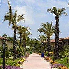 Club Hotel Felicia Village - All Inclusive Манавгат пляж фото 3