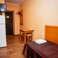 Гостиница Каштан Стандартный номер разные типы кроватей фото 13