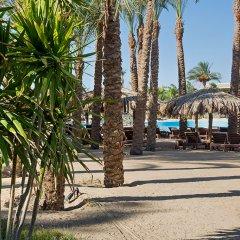 Отель Sindbad Aqua Hotel & Spa Египет, Хургада - 8 отзывов об отеле, цены и фото номеров - забронировать отель Sindbad Aqua Hotel & Spa онлайн фото 2