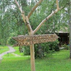 Гостиница Berezka Aya в Ае отзывы, цены и фото номеров - забронировать гостиницу Berezka Aya онлайн Ая фото 3