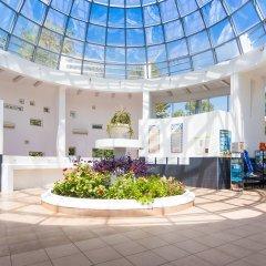 Delfin Adlerkurort Hotel бассейн