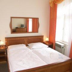 Отель Brezina Pension 3* Стандартный номер с двуспальной кроватью фото 3