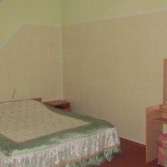 Гостиница Guest House Elena удобства в номере