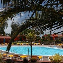 Отель Bungalows Colorado Golf Maspalomas бассейн фото 3