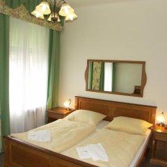 Отель Pension Brezina Prague 3* Стандартный номер фото 6