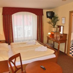 Отель Brezina Pension 3* Номер Делюкс с различными типами кроватей фото 7