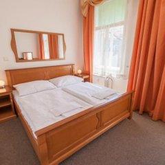Отель Brezina Pension 3* Стандартный номер с различными типами кроватей фото 2