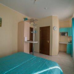 Гостиница Теремок Московский Стандартный номер с двуспальной кроватью фото 7