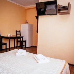 Гостиница Каштан Стандартный номер разные типы кроватей фото 15