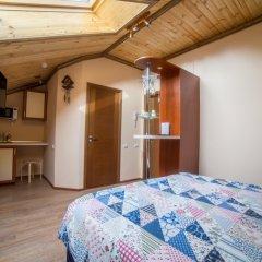 Гостиница Теремок Московский Стандартный номер с двуспальной кроватью фото 2