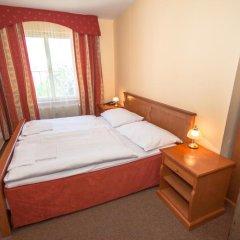 Отель Brezina Pension 3* Номер Делюкс с различными типами кроватей фото 5