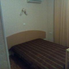 Гостевой Дом Лукоморье Стандартный номер с двуспальной кроватью