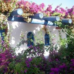 Palm Bay Hotel фото 5