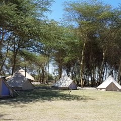 Отель Africa Safari Lake Manyara пляж