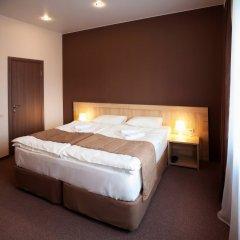 Гостевой дом Чехов 3* Номер Комфорт с различными типами кроватей фото 3