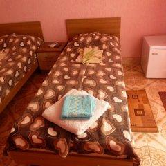 Мини-Отель Виктория Стандартный номер с различными типами кроватей фото 11