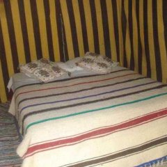 Отель Ecolodge Ouednoujoum Марокко, Уарзазат - отзывы, цены и фото номеров - забронировать отель Ecolodge Ouednoujoum онлайн комната для гостей