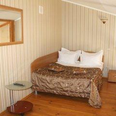 Гостиница Алмаз Стандартный номер с двуспальной кроватью фото 8