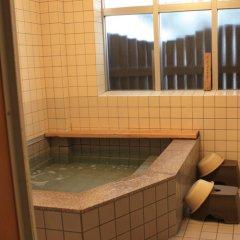 Отель Business Ryokan Tatsumi Минамиавадзи бассейн