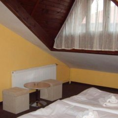 Hotel Rodina Банско комната для гостей фото 7