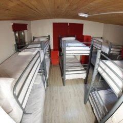 Vegan Bella Vista Hostel Кровать в общем номере двухъярусные кровати фото 16