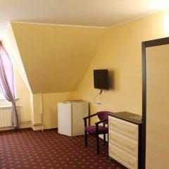 Отель Виктория Стандартный номер фото 16