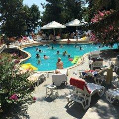 Park Hotel Briz - Free Parking бассейн фото 3