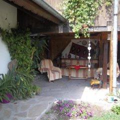 Отель House Gabri Болгария, Тырговиште - отзывы, цены и фото номеров - забронировать отель House Gabri онлайн фото 15