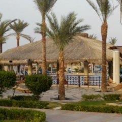 Отель Aquis Taba Paradise Resort Египет, Таба - отзывы, цены и фото номеров - забронировать отель Aquis Taba Paradise Resort онлайн бассейн