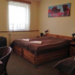 Отель Pension Platan 3* Стандартный номер с двуспальной кроватью фото 5
