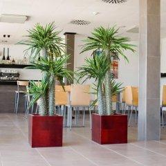 Отель Platja Gran Испания, Сьюдадела - отзывы, цены и фото номеров - забронировать отель Platja Gran онлайн интерьер отеля фото 2