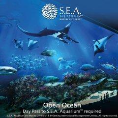 Resorts World Sentosa - Festive Hotel 5* Семейный номер Делюкс с двуспальной кроватью фото 2
