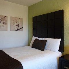 Hotel Posada Terranova 3* Номер Делюкс с различными типами кроватей