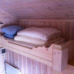 Отель Bø Camping og Hytter Стандартный номер с различными типами кроватей
