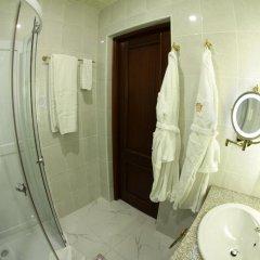 Отель Голден Пэлэс Резорт енд Спа 4* Стандартный номер фото 14