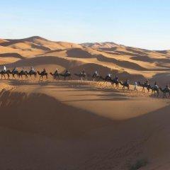Отель Merzouga Desert Camp Марокко, Мерзуга - отзывы, цены и фото номеров - забронировать отель Merzouga Desert Camp онлайн приотельная территория
