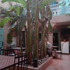 Отель Dar M'chicha