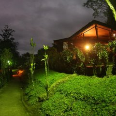 Отель Chachagua Rainforest Ecolodge фото 23