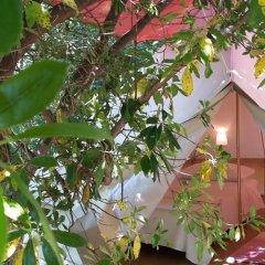 Отель Agricamping La Gallinella Кастаньето-Кардуччи парковка
