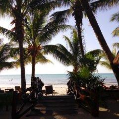 Отель Beachfront Hotel La Palapa - Adults Only Мексика, Остров Ольбокс - отзывы, цены и фото номеров - забронировать отель Beachfront Hotel La Palapa - Adults Only онлайн пляж