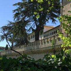 Отель Il Pettirosso B&B фото 4