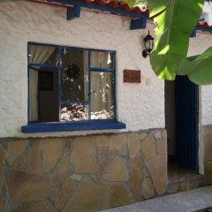 Hotel Cabanas Paradise интерьер отеля фото 2