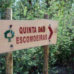 Отель Quinta Das Escomoeiras фото 4