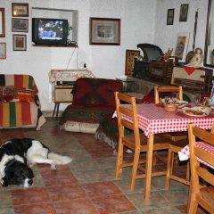 Отель Guest House Kamenik Болгария, Чепеларе - отзывы, цены и фото номеров - забронировать отель Guest House Kamenik онлайн с домашними животными