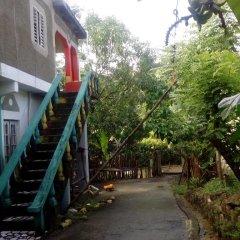 IRIE Vibez hostel Порт Антонио фото 2